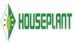 House Plant Barcelona11
