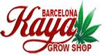 Kaya Barcelona11
