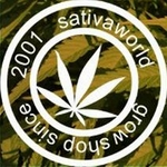 Sativa World11