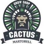 Cactus Martorell11